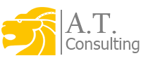 A. T. CONSULTING, PP