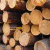 Лесоматериалы круглые