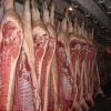 Свинина свежая: туши, полутуши