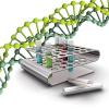 ДНК тест на батьківство