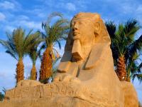 Туры Египет