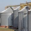 Приймання і зберігання зерна