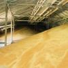 Сушіння зерна