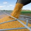 Відвантаження зерна