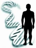 Встановлення біологічного батьківства